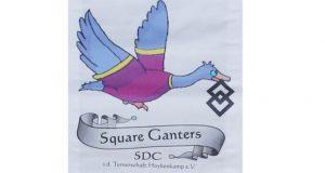 Square-Dance_Logo3